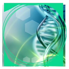 Medizinische- & Bioinformatik